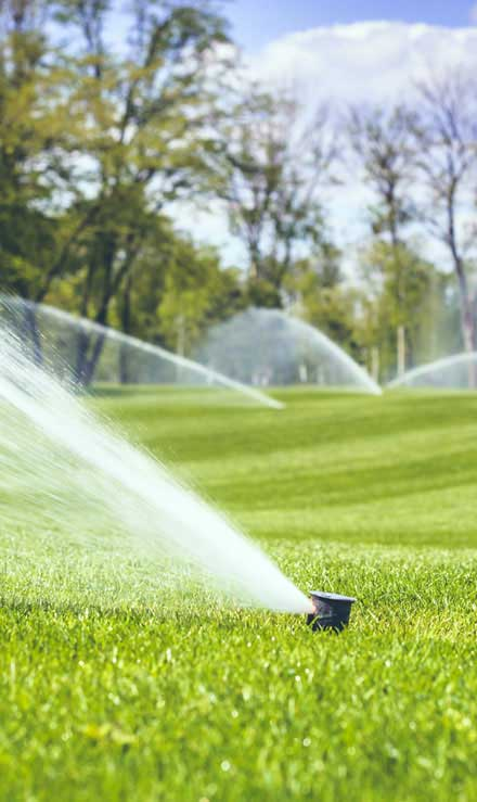 Land Master Contracting Ltd. Sprinkler Installation